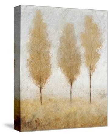 Autumn Springs I-Tim O'toole-Stretched Canvas Print