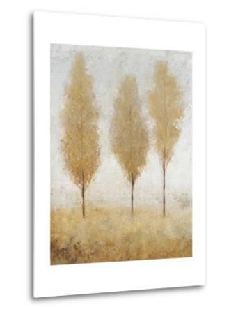 Autumn Springs I-Tim O'toole-Metal Print