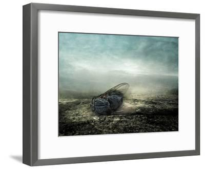Fly, 2013-Johan Lilja-Framed Giclee Print