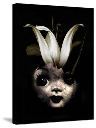 Doll Flower, 2013-Johan Lilja-Stretched Canvas Print