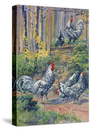 A View of the Silver Spangled Variety of Hamburgs-Hashime Murayama-Stretched Canvas Print