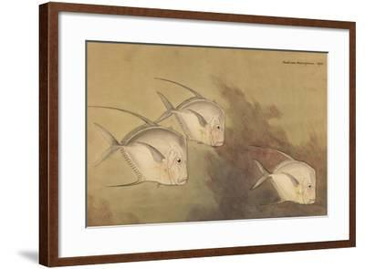A Painting of Moon Fish-Hashime Murayama-Framed Giclee Print