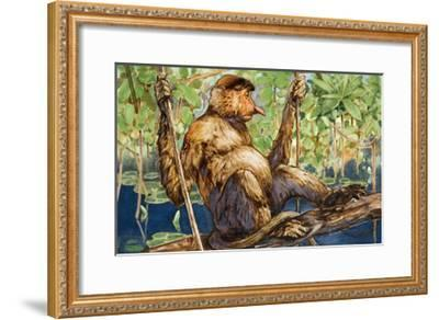 Painting of a Proboscis Monkey in a Borneo Rain Forest-Elie Cheverlange-Framed Giclee Print