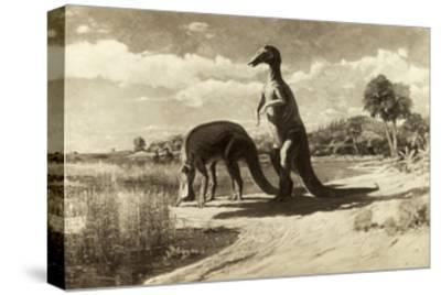 A Painting of Two Dinosaurs with Duck-Like Heads-Charles R. Knight-Stretched Canvas Print