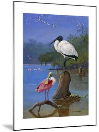 A Wood Ibis Perches with a Roseate Spoonbill on Dead Tree Limbs-Allan Brooks-Mounted Giclee Print