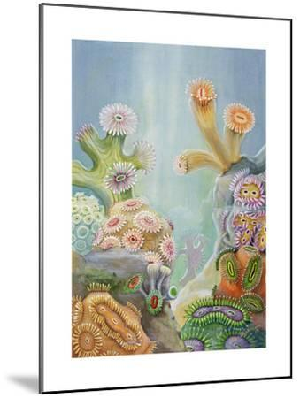 Coral Polyps Reproduce by Splitting in Half-Else Bostelmann-Mounted Giclee Print