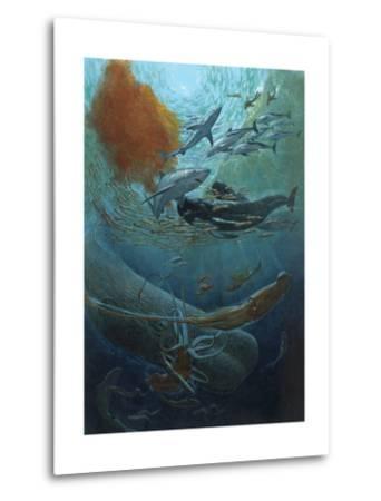 Marine Animals of the Kaikoura Canyon, a Trench Off South Island-John Dawson-Metal Print