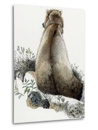 Illustration of a Grizzly Bear in the Arctic National Wildlife Refuge-Jack Unruh-Metal Print