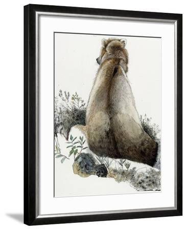 Illustration of a Grizzly Bear in the Arctic National Wildlife Refuge-Jack Unruh-Framed Giclee Print
