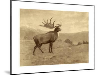 A Painting of an Irish Elk of the Pleistocene Era-Charles R. Knight-Mounted Giclee Print