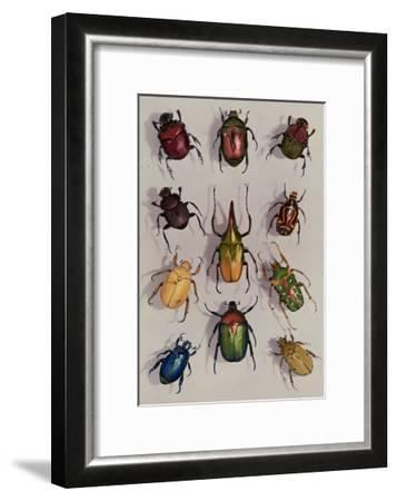 A Group of Scarabs from the Scarabaeid Family-Edwin L^ Wisherd-Framed Photographic Print
