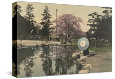 A Woman Observes the Reflection of Cherry Blossoms in a Small Pond-Kiyoshi Sakamoto-Stretched Canvas Print