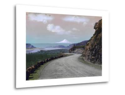 The Columbia River Winds Through Mountainous Maryhill and Mt. Hood-A. H. Barnes-Metal Print