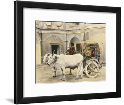 Teenage Girls Smile and Wave Out of a Canopied Wagon Drawn by Oxen-Franklin Price Knott-Framed Photographic Print