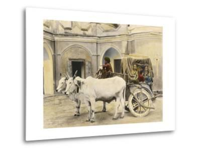 Teenage Girls Smile and Wave Out of a Canopied Wagon Drawn by Oxen-Franklin Price Knott-Metal Print