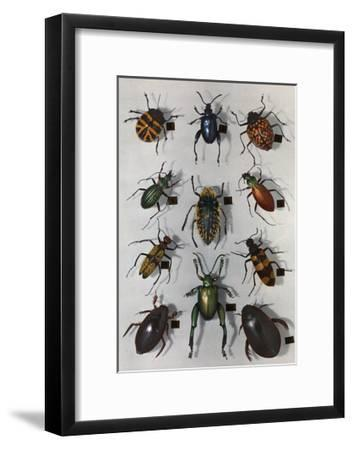 Collection of Various Beetles-Edwin L^ Wisherd-Framed Photographic Print