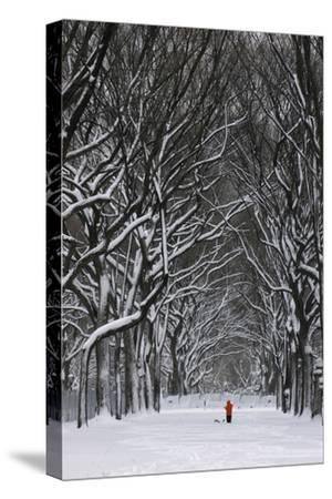 A Person under a Canopy of Snow Laden Trees in Central Park-Kike Calvo-Stretched Canvas Print