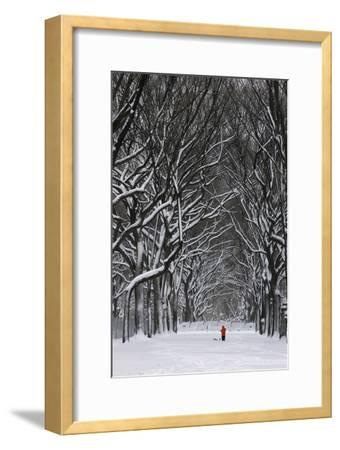 A Person under a Canopy of Snow Laden Trees in Central Park-Kike Calvo-Framed Premium Photographic Print
