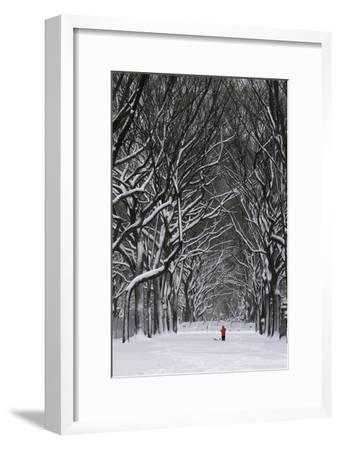 A Person under a Canopy of Snow Laden Trees in Central Park-Kike Calvo-Framed Photographic Print