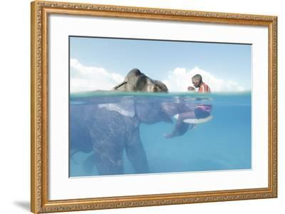A Mahout, Sits on the Tusks of Rajan, the Elephant, in the Andaman Islands-Cesare Naldi-Framed Photographic Print