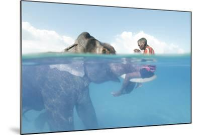 A Mahout, Sits on the Tusks of Rajan, the Elephant, in the Andaman Islands-Cesare Naldi-Mounted Photographic Print