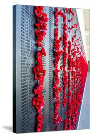 The Roll of Honour and the Names of Fallen Soldiers are Remembered with Bright Red Poppies-Jason Edwards-Stretched Canvas Print