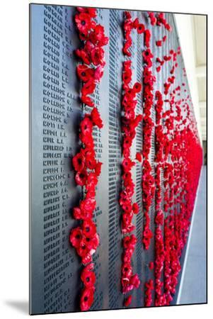 The Roll of Honour and the Names of Fallen Soldiers are Remembered with Bright Red Poppies-Jason Edwards-Mounted Photographic Print