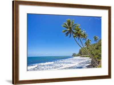 Tall, Thin Palm Trees Reaching Out to Sea on the Coast of Tahiti-Mike Theiss-Framed Photographic Print
