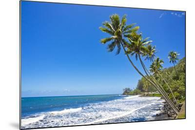 Tall, Thin Palm Trees Reaching Out to Sea on the Coast of Tahiti-Mike Theiss-Mounted Photographic Print