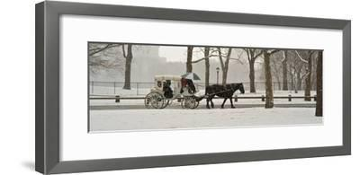 A Horse a Carriage in Central Park During a Blizzard-Kike Calvo-Framed Photographic Print