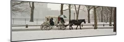 A Horse a Carriage in Central Park During a Blizzard-Kike Calvo-Mounted Photographic Print