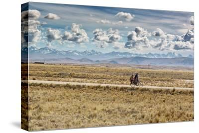 A Man Cycles with a Family Member on the Back of His Bicycle Between La Paz and Tiwanaku-Alex Saberi-Stretched Canvas Print