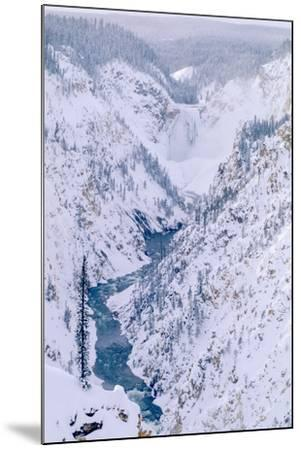 The View of the Lower Falls of the Yellowstone from Artist Point-Tom Murphy-Mounted Photographic Print