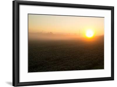 Misty Golden Sunrise over a Rural Cornfield-Stephen St^ John-Framed Photographic Print