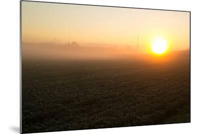 Misty Golden Sunrise over a Rural Cornfield-Stephen St^ John-Mounted Photographic Print