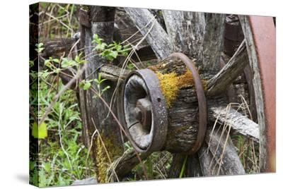 Close Up of a Decaying Old Wagon Wheel-Marc Moritsch-Stretched Canvas Print
