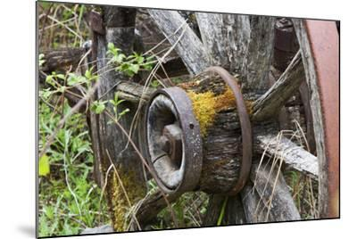 Close Up of a Decaying Old Wagon Wheel-Marc Moritsch-Mounted Photographic Print