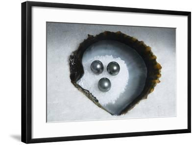 Tahitian Black Pearls on Rock Salt-Andy Bardon-Framed Photographic Print