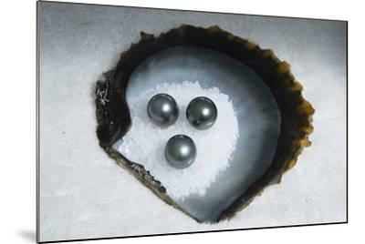 Tahitian Black Pearls on Rock Salt-Andy Bardon-Mounted Photographic Print
