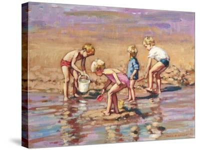 Collecting Shells-Paul Gribble-Stretched Canvas Print