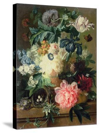 Still Life of Flowers-Pauline Baynes-Stretched Canvas Print