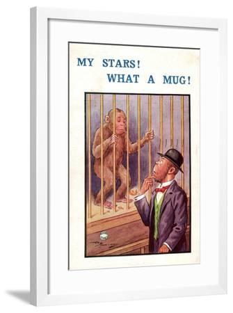 Künstler Affe Hinter Gittern, My Stars! What a Mug!, Mann Mit Schwarzen Hut--Framed Giclee Print