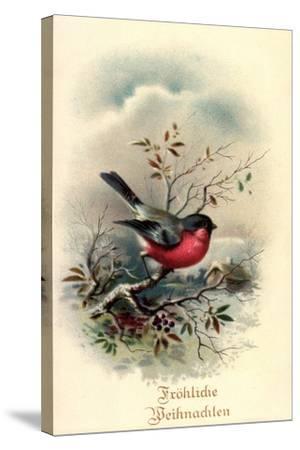 Fröhliche Weihnachten, Rotkehlchen, Erithacus Rubecula--Stretched Canvas Print