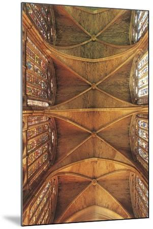 Spain, Castilla Y Leon, Leon Cathedral, Nave Ceiling--Mounted Giclee Print