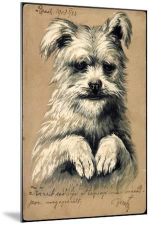 Präge Hund, Hund Auf Zwei Beinen--Mounted Giclee Print