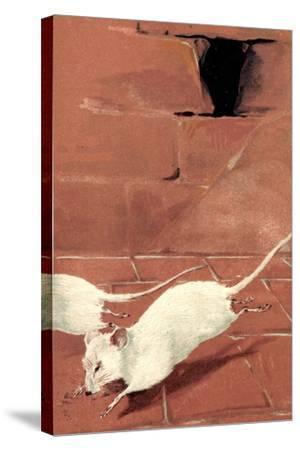 Präge Litho Zwei Weiße Mäuse, Mausloch, Ziegelwand, Albino--Stretched Canvas Print