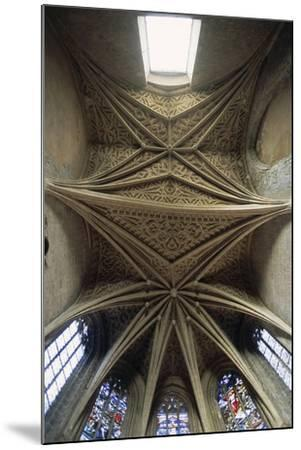 Vaults of Chapel of Chateau De Chambery, Rhone-Alpes, France--Mounted Giclee Print