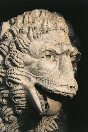 National Museum of Villa Guinigi, Lion Head, Lucca, Tuscany, Italy--Framed Giclee Print