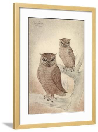 Künstler Swildens, Zwei Eulen Sitzen Auf Den Ästen Des Baumes--Framed Giclee Print