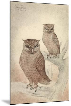 Künstler Swildens, Zwei Eulen Sitzen Auf Den Ästen Des Baumes--Mounted Giclee Print